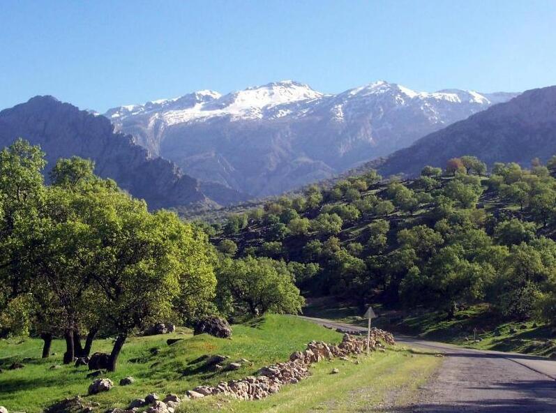 Iran's Prehistory