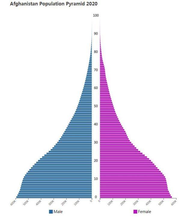 Afghanistan Population Pyramid 2020