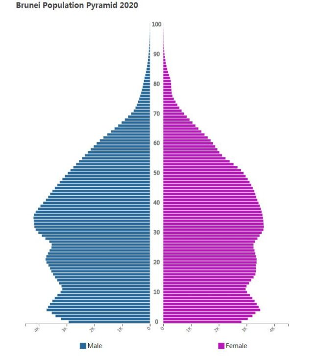 Brunei Population Pyramid 2020