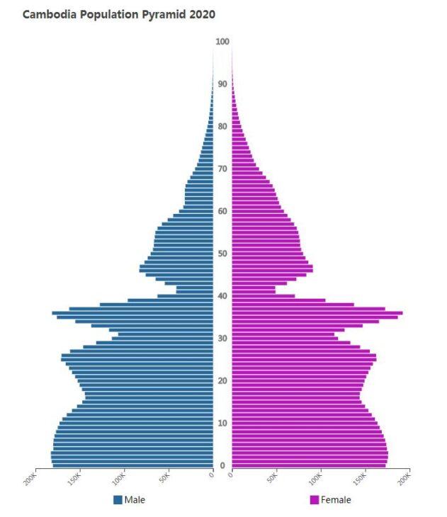 Cambodia Population Pyramid 2020