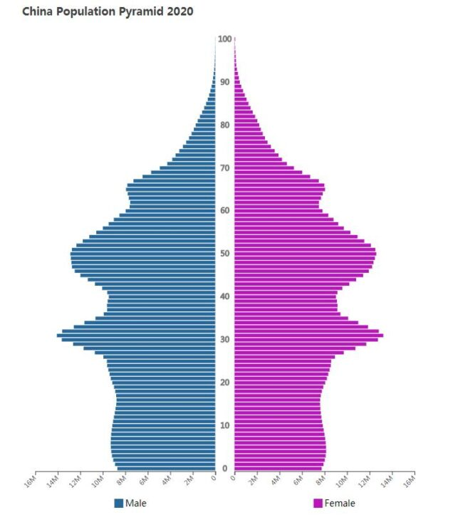 China Population Pyramid 2020