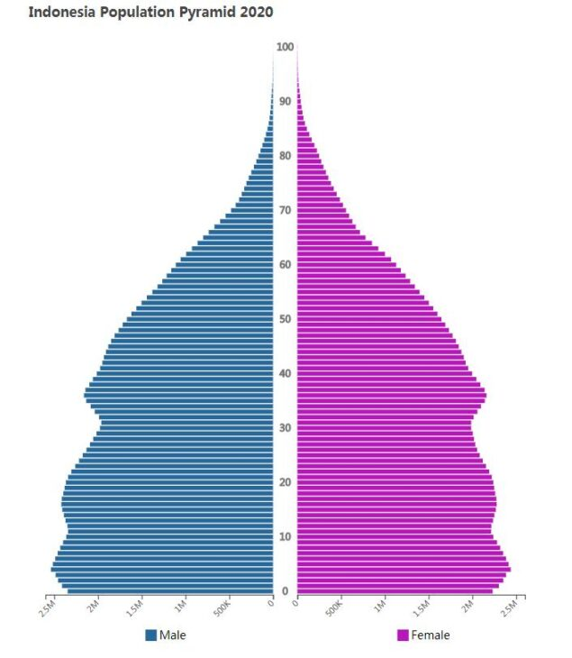 Indonesia Population Pyramid 2020