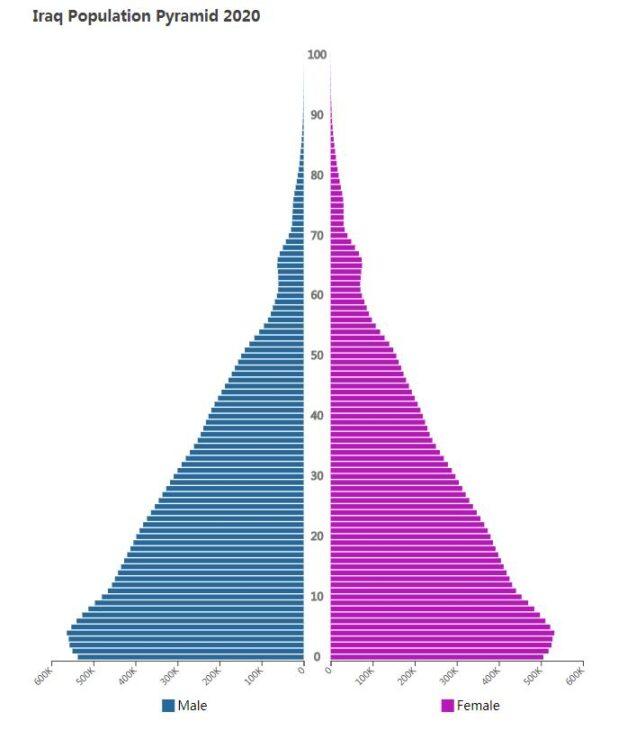 Iraq Population Pyramid 2020
