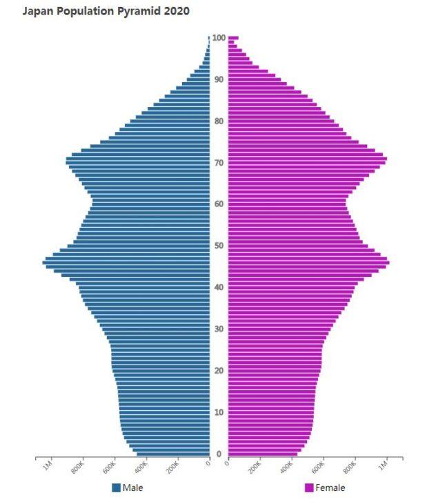 Japan Population Pyramid 2020