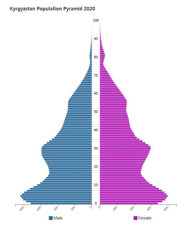 Kyrgyzstan Population Pyramid 2020