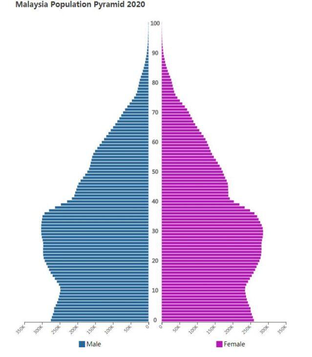 Malaysia Population Pyramid 2020