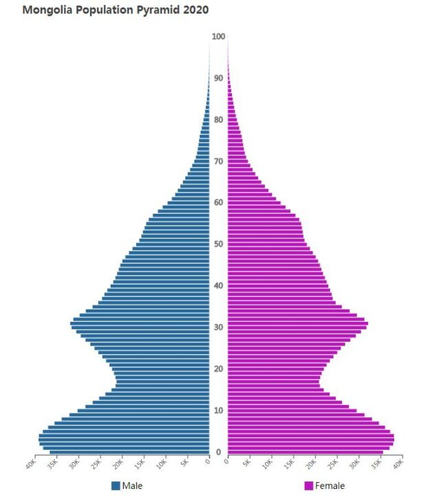 Mongolia Population Pyramid 2020