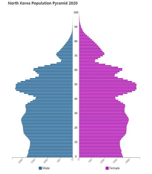 North Korea Population Pyramid 2020