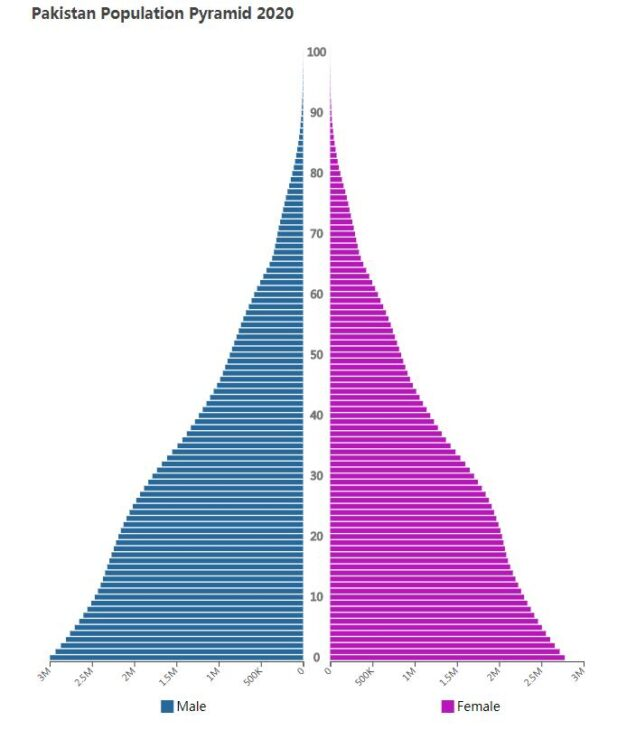 Pakistan Population Pyramid 2020