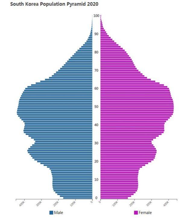 South Korea Population Pyramid 2020