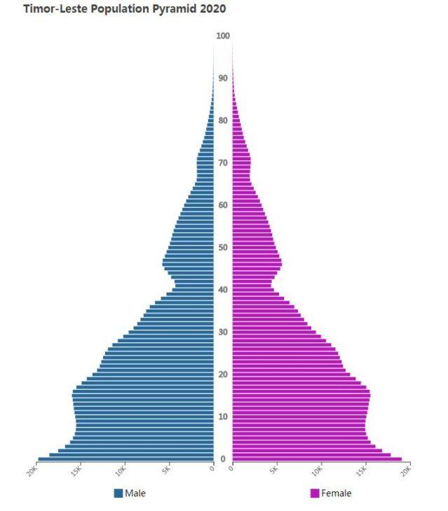 Timor-Leste Population Pyramid 2020