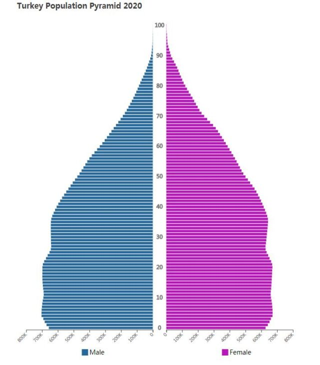 Turkey Population Pyramid 2020