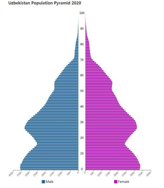 Uzbekistan Population Pyramid 2020