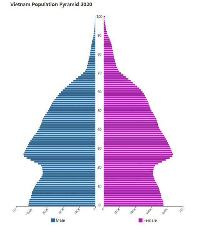 Vietnam Population Pyramid 2020
