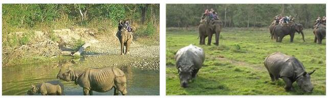 Chitwan Royal National Park (World Heritage)